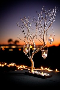 Love candles hanging from branches!