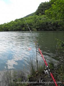 Din nou la pescuit.