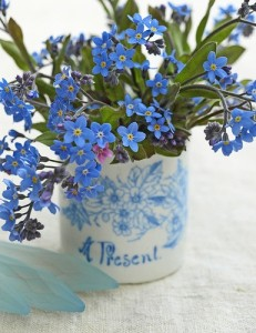 Sweet and cheerful forget-me-nots.  Styling & Photography © Ingrid Henningsson/Of Spring and Summer
