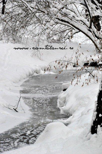 Incremenire de iarna