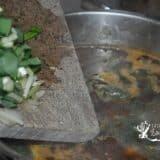Adaugarea usturoiului verde la ciorba de urzici