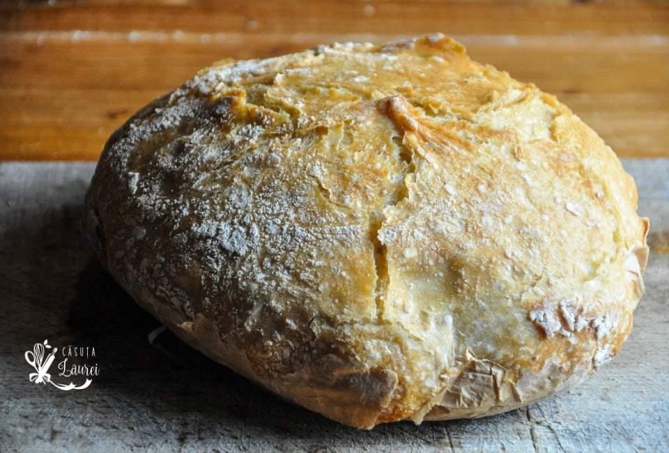 paine de casa fara framantare